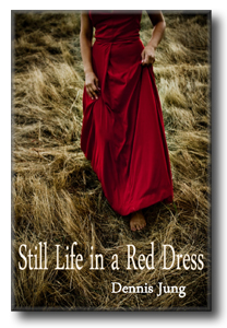 Still Life in a Red Dress Dennis Jung book cover